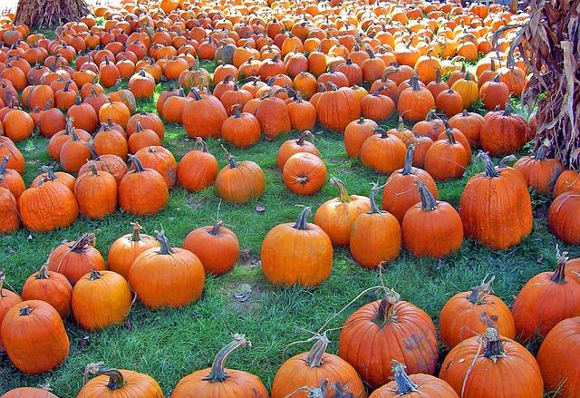 Pumpkins a lot!