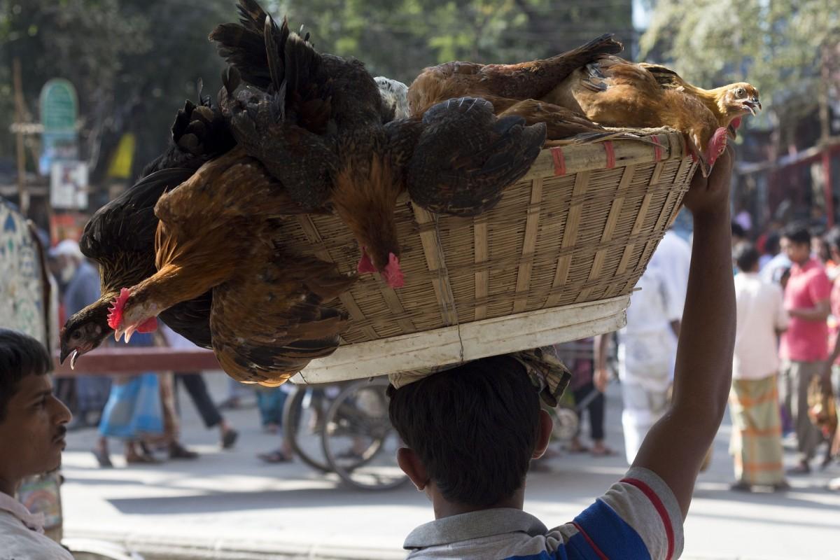 Bangladesh Market Basket